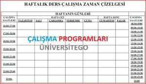 ygs-calisma-programı-mf-ts-tm-sayısal