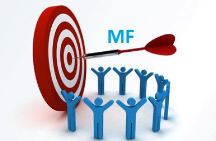 LYS Sayısal MF Çalışma Programı