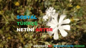 turkce-sosyal-net-artir