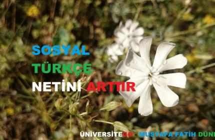 YGS Sosyal ve Türkçe Netini Arttır