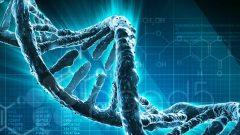 2018 LYS Biyoloji Konuları ve Soru Dağılımı