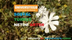 turkce sosyal net arttır