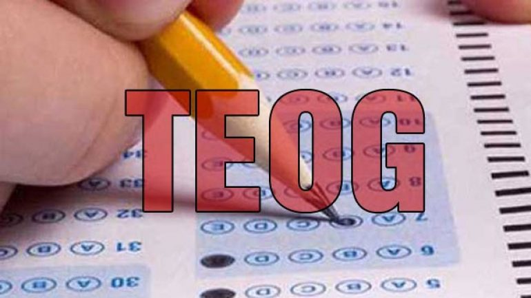 TEOG Türkçe soru ve cevapları Kasım 2016