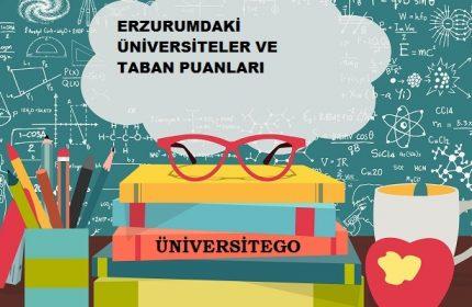 Erzurum'daki Üniversiteler ve Taban Puanları