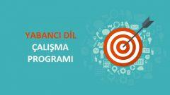 2018 YGS Yabancı Dil Çalışma Programı
