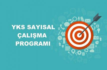 2020 YKS Sayısal MF Çalışma Programı