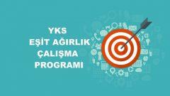 2020 YKS Eşit Ağırlık TM Çalışma Programı