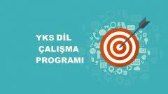 2019 YKS DİL Çalışma Programı