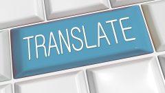 Makale Tercüme Hizmeti Sunumuyla Elde Edilen Bir Kariyer!